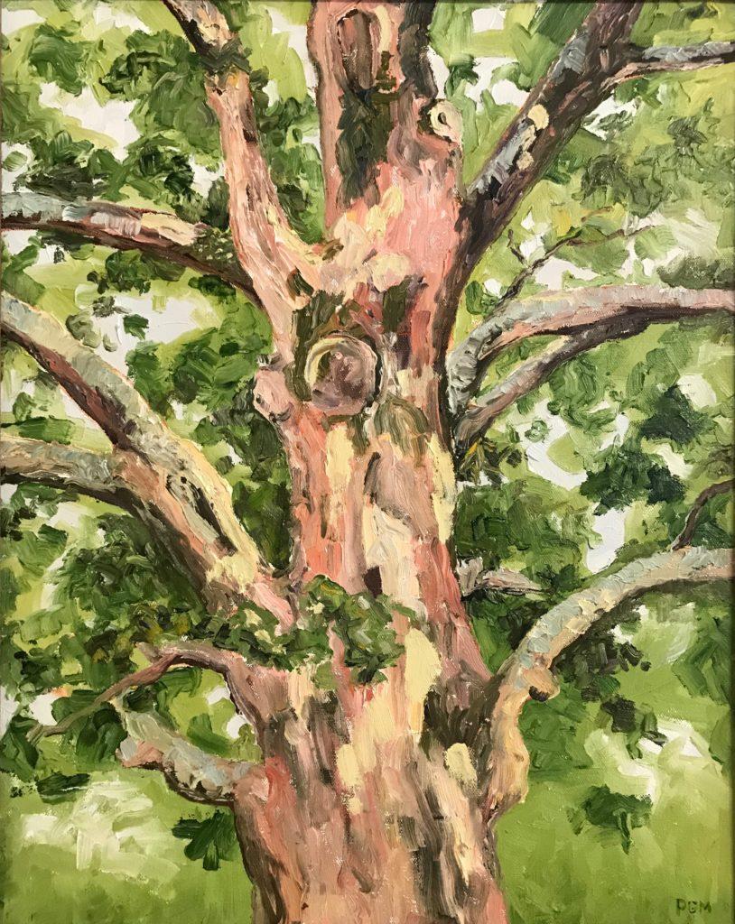 Patty Grewe-Mullins ~ McDaniel's Oak